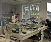 un de nos laboratoires – Vivi et Mika à la paillasse