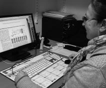 Echantillonnage de feuilles pour l'analyse des fluides apoplasmiques