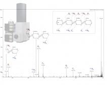 Analyse structural d'oligogalacturonides produites pendant l'interaction Arabidopsis thaliana-Botrytis cinerea