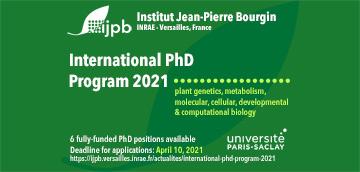 International PhD Program 2021